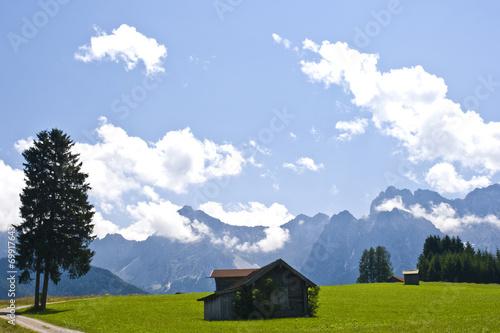 canvas print picture Baum mit Haus und Bergen