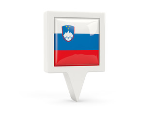Square flag icon of slovenia