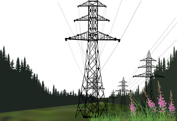 line of electric power pylons in green forest