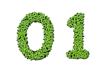 Duckweed alphabet letters - Number 0, 1