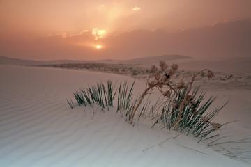Sunrise in White Dunes National Monument