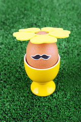 Edd in egg cup on green background