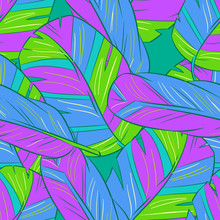 seamless, avec des plumes
