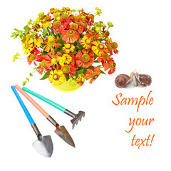 Bouquet of red flowers (Helenium), garden tools and snails isola