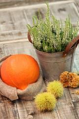 Autumn Pumpkin Decoration