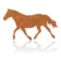 pony III