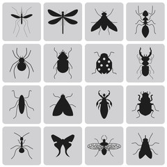Exterminator Insects black icon set1. Vector Illustration eps10