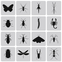 Exterminator Insects black icon set2. Vector Illustration eps10