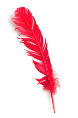 red feather