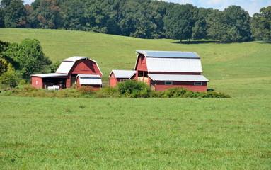 Red Barn Rural Georgia, USA