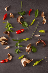 Red and green chilly pepper,herbs and spices on a gray backgroun