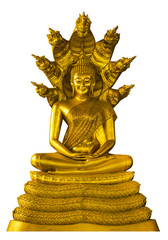 Buddha image statue with naga over head