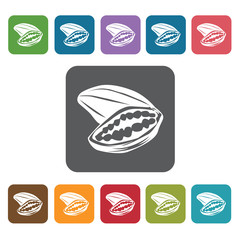 Cacao sign icon symbol set. Tropical fruits set. Rectangle colou