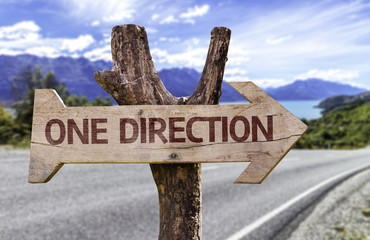 One Direction wooden sign with a landscape background