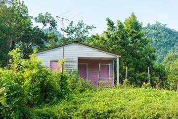 Abode of a Cuban Farmer
