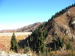 mountain, sky, trees