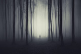 spooky forest scene with ghost on a path