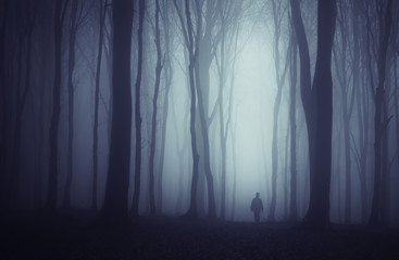 spooky dark forest with mysterious man walking on a path