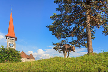 View in Arth-Goldau