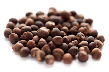Santalum album (Indian sandalwood) seed