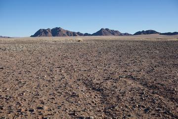 Deserto di sassi e pietre