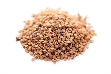 Ashwagandha seed (Withania somnifera)