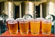 Leinwanddruck Bild - beer flight