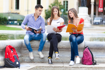 Students studying at the park