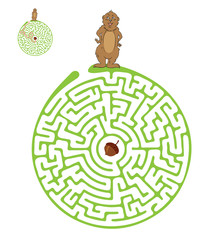 Vector Maze, Labyrinth with Marmot and Nut.