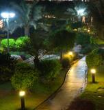 garden at night - 69952089