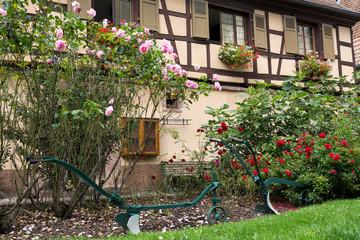 Jardin et maison alsacienne