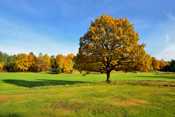 krajobraz wiejski , jesień