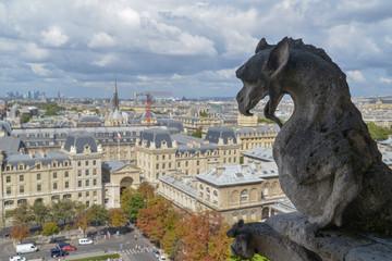 Gargoyle on the top of Notre Dame de Paris - France