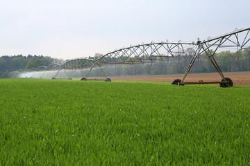 Großbewässerung_3
