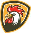 Chicken Rooster Head Mascot Shield Retro