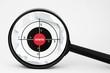 Web target concept