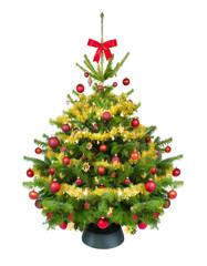 Weihnachtsbaum mit Christbaumständer