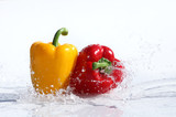 Red and Yellow paprika with water splash