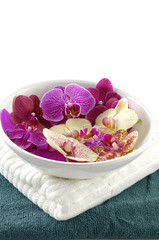 Close up of spa towels with orchid