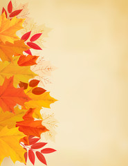 Retro autumn background with colorful leaves. Vector illustratio