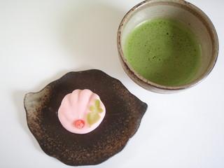 秋の和菓子  菊  WAGASHI
