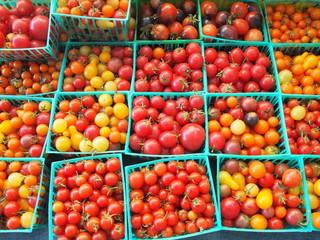 市場のミニトマト