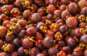 Mangosteen fruit of Thailand.