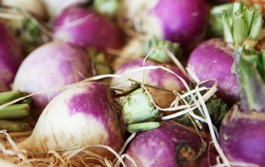 navets légumes du jardin