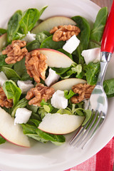salad with walnut and cheese