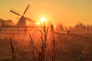 Foggy late summer sunrise near a windmill.