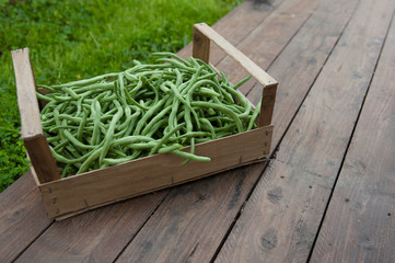 Box of green beans