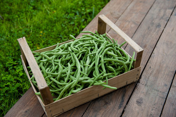 Box of green beans