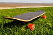 canvas print picture - Skateboard