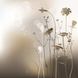 Floral background, weeds and thistle